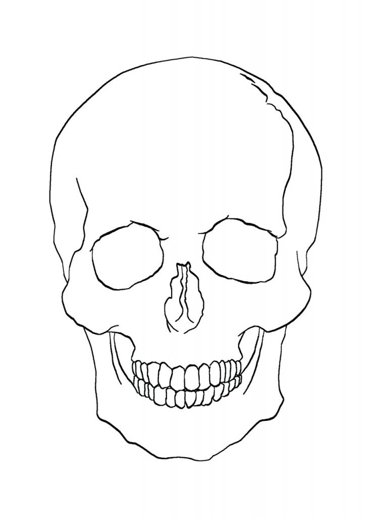 Drawn skull simple Drawing Clipartsco  Skull Simple
