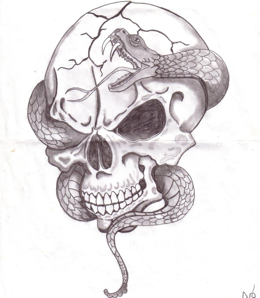 Drawn skull snake Glsellers1 on DeviantArt Snake with