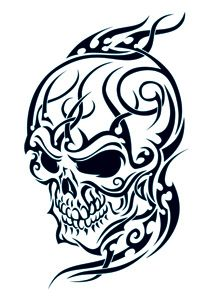 Drawn ssckull tribal More Drawings skull Tattoo Pictures
