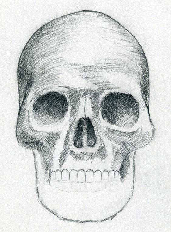 Drawn skull unique How to draw draw result