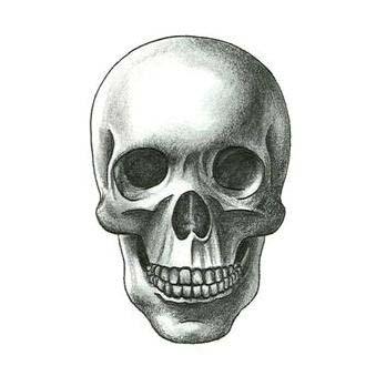 Drawn skull unique And  Designs Ideas Unique