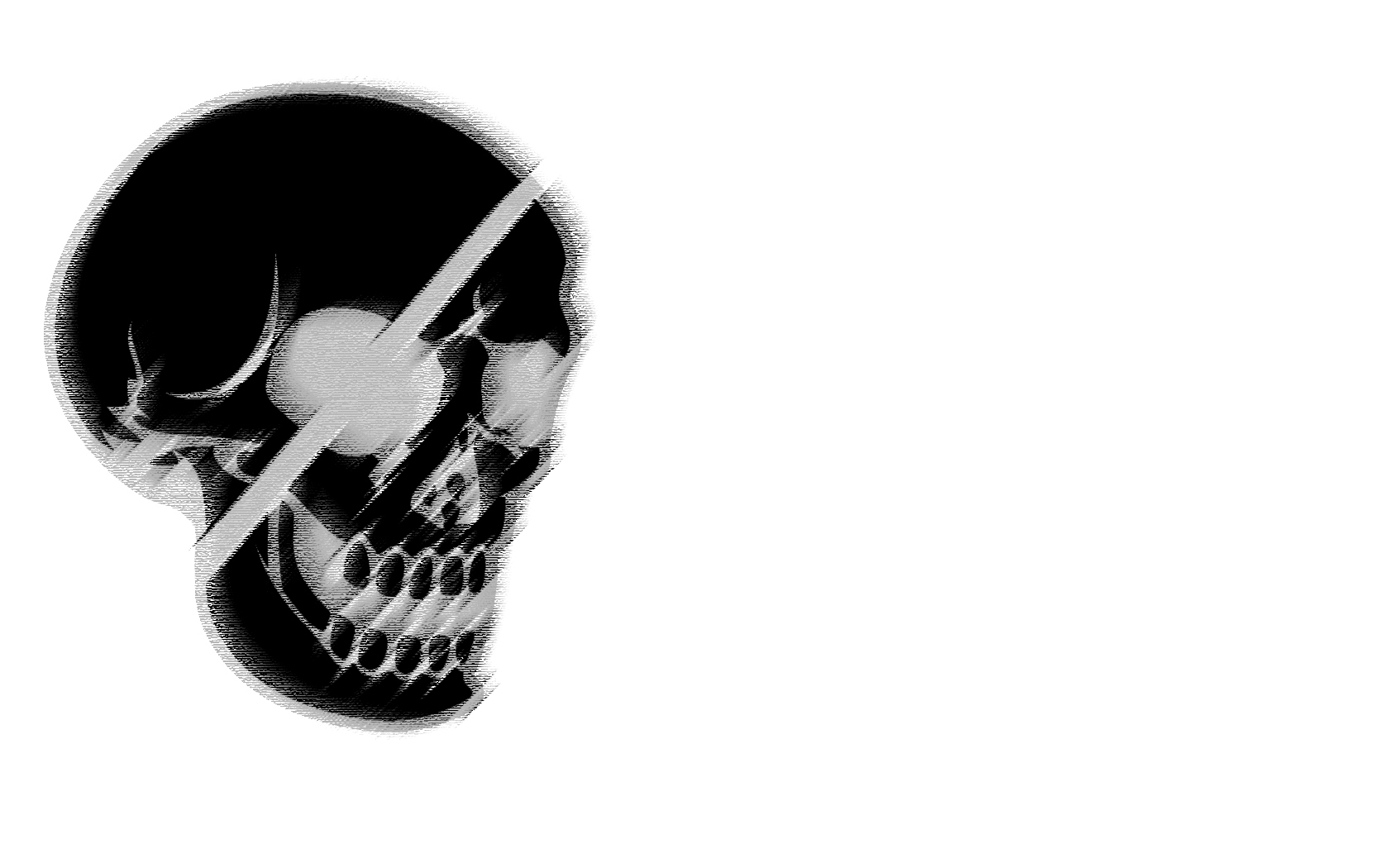 Drawn ssckull white background Drawing skull Download White 1680x1050