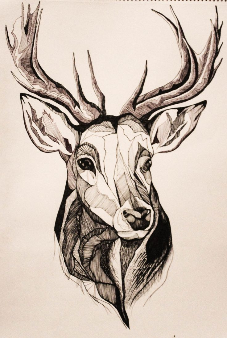 Drawn stag Koalaclothing best winter The 25+