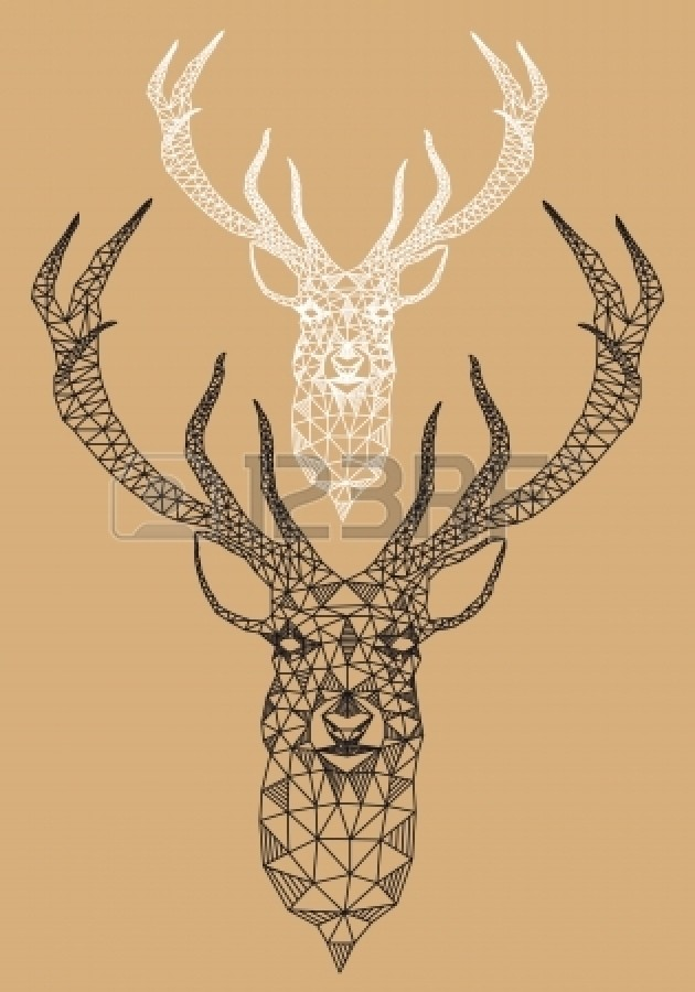 Drawn stag abstract Head with deer deer vector