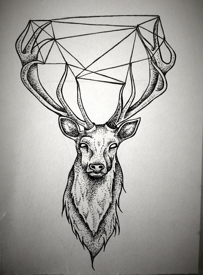 Drawn stag deer antler The images Pinterest Stag a
