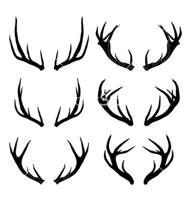 Drawn stag deer antler Tattoo Deer horn Antler The