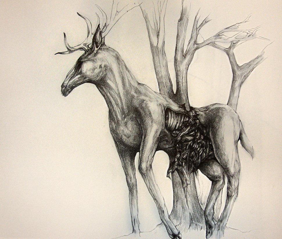 Drawn stag deviantart On DeviantArt blackvragor Pencil Stag: