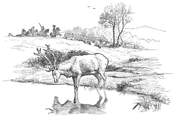 Drawn stag drinking water Stag The at C2 Aesop