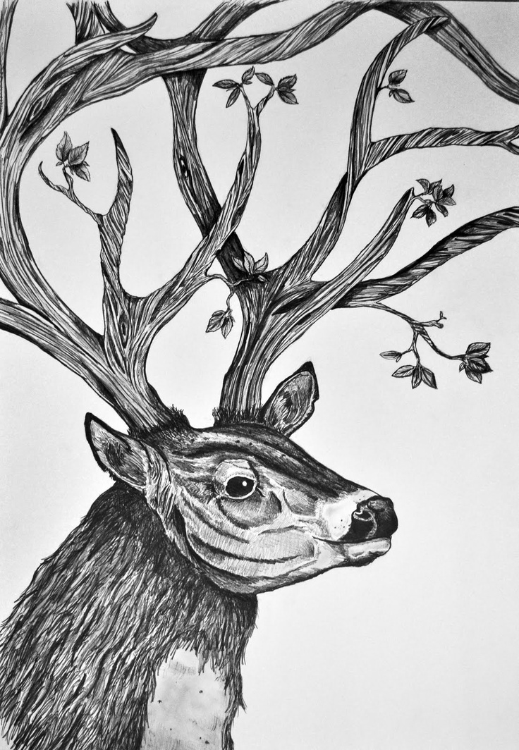 Drawn stag full body Images Pinterest Tattoo Best about