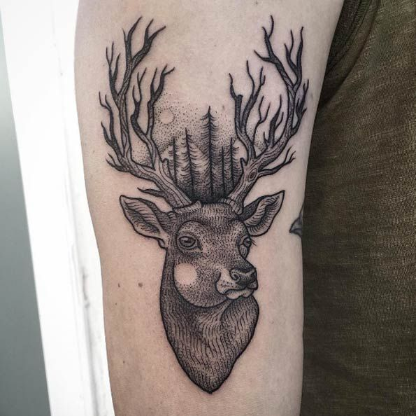 Drawn stag full body Pinterest on by design 20+