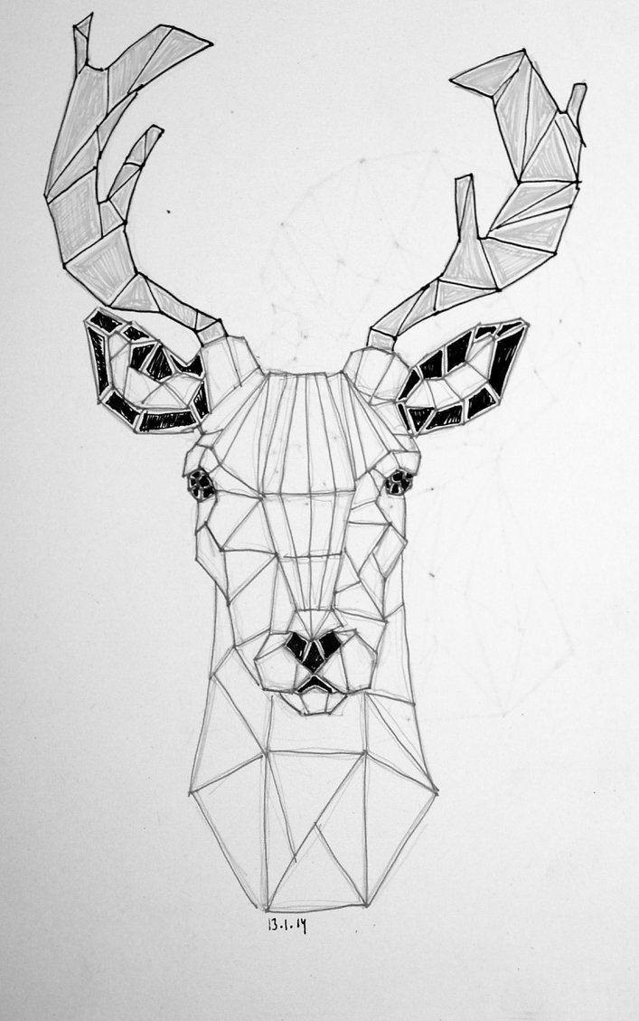 Drawn buck geometric  Search Search geometric maintain