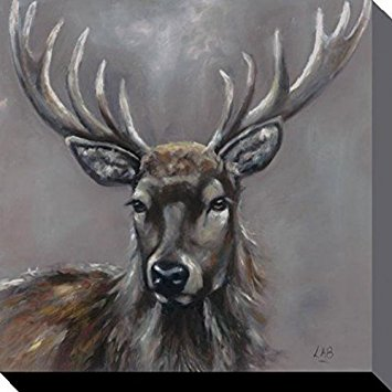 Drawn stag majestic Majestic 16 Brown inches) Louise
