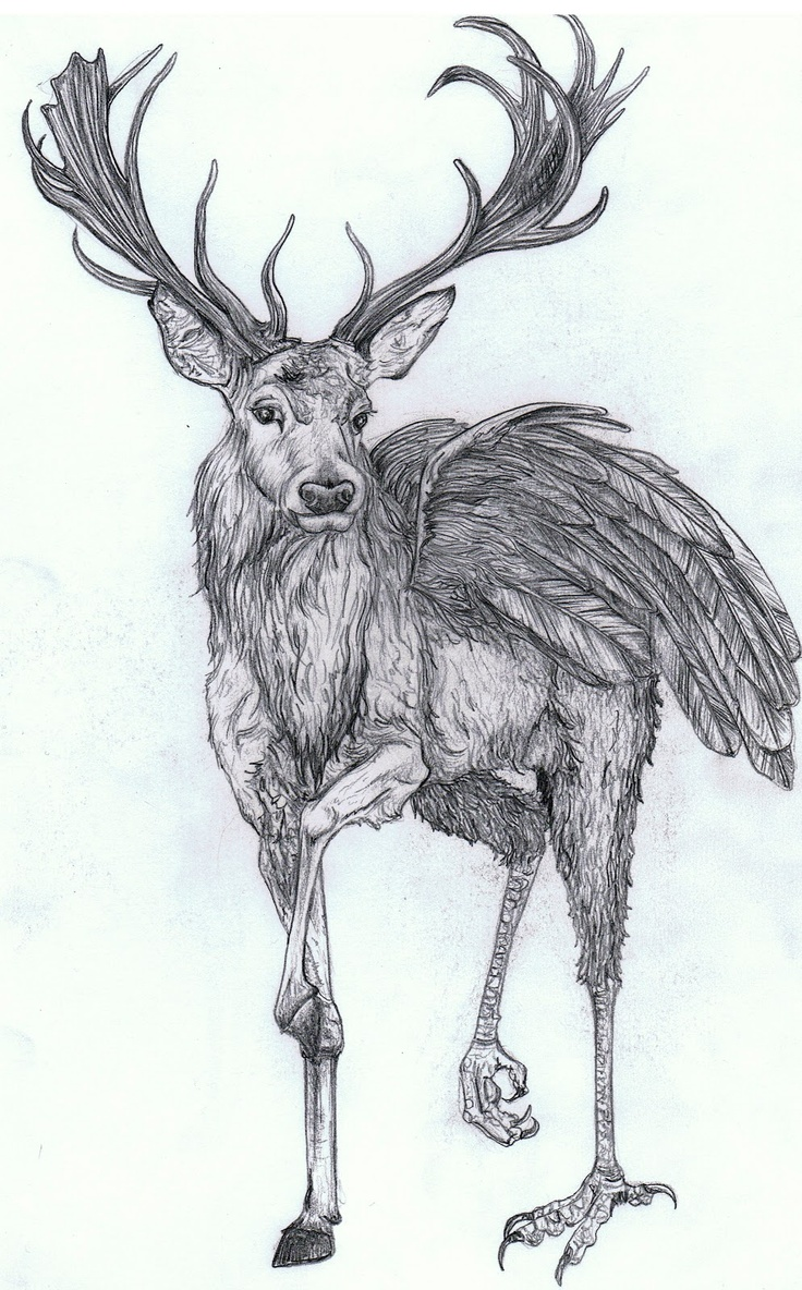 Drawn stag monster CreaturesCreature Otherworld · Pinterest Other