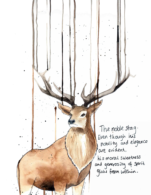Drawn stag noble Noble the Natalie noble Smillie