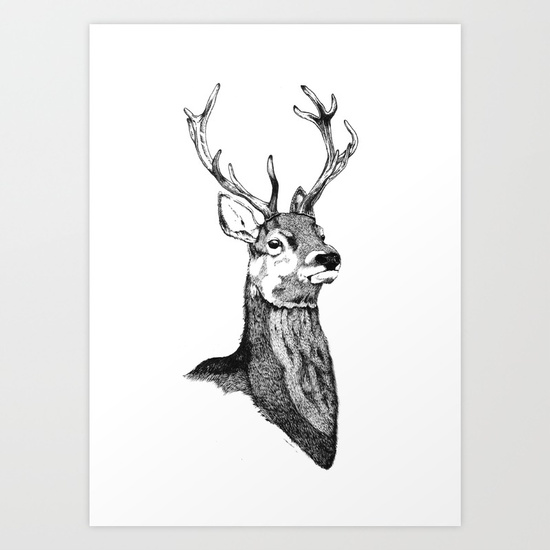 Drawn stag noble Noble by Noble Art Owl