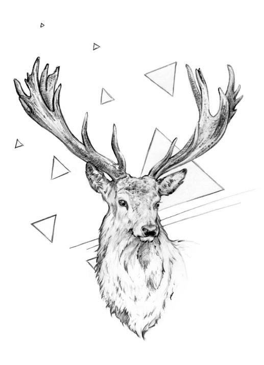 Drawn stag profile The drawing ideas Pinterest best