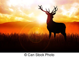 Drawn stag silhouette Deer meadow illustration  34