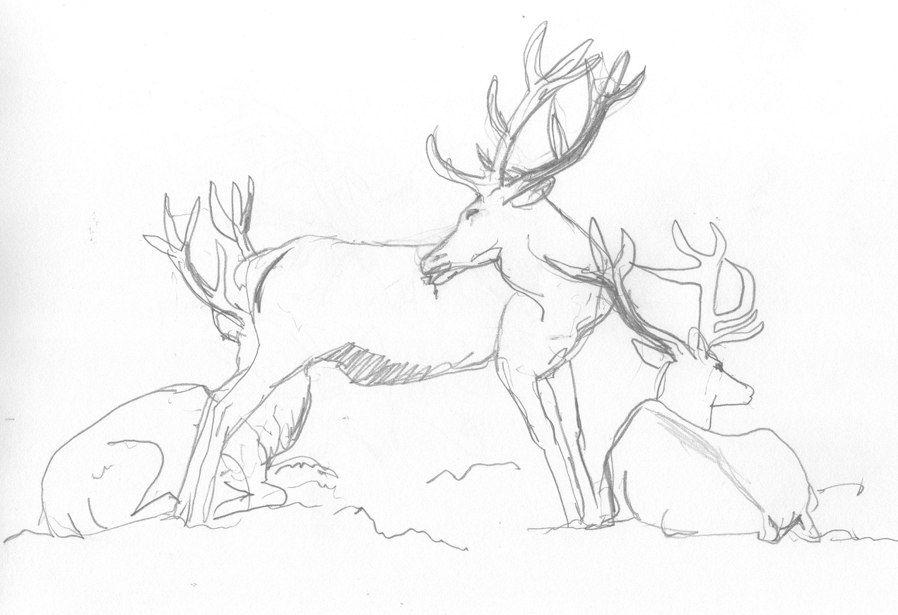 Drawn stag spotted deer Clattering and as sparred other