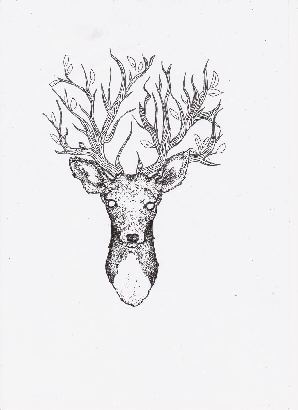 Drawn stag traditional With tattoo Stags done good