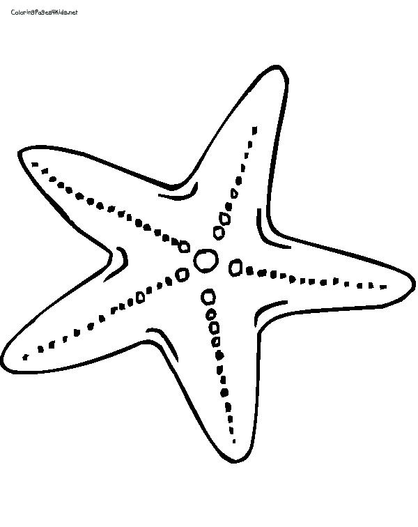 Simple clipart starfish Of Pictures Best 25+ Printable