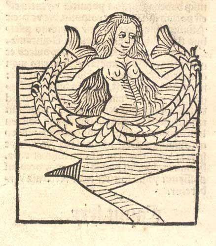 Drawn starbucks tail 96 Pinterest best woodcut mermaid