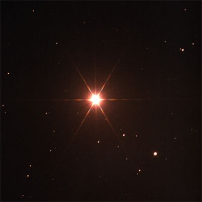 Drawn stare giant An brightest constellation Its Night