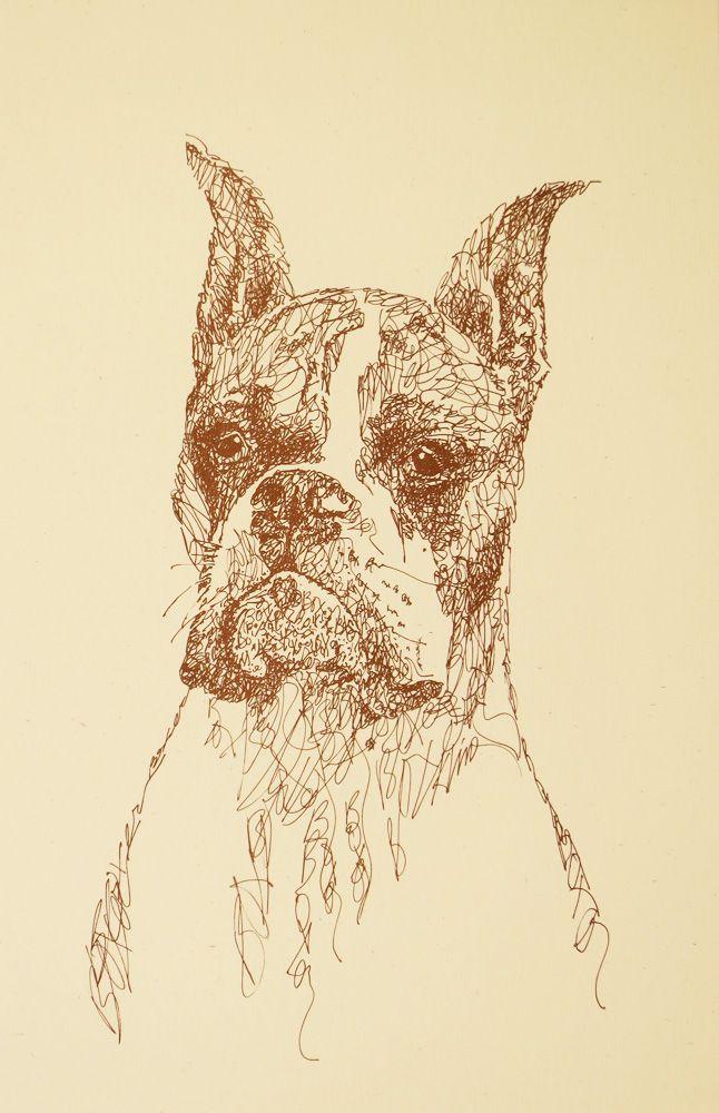 Drawn stare plain Dog drawn portraits from photographs