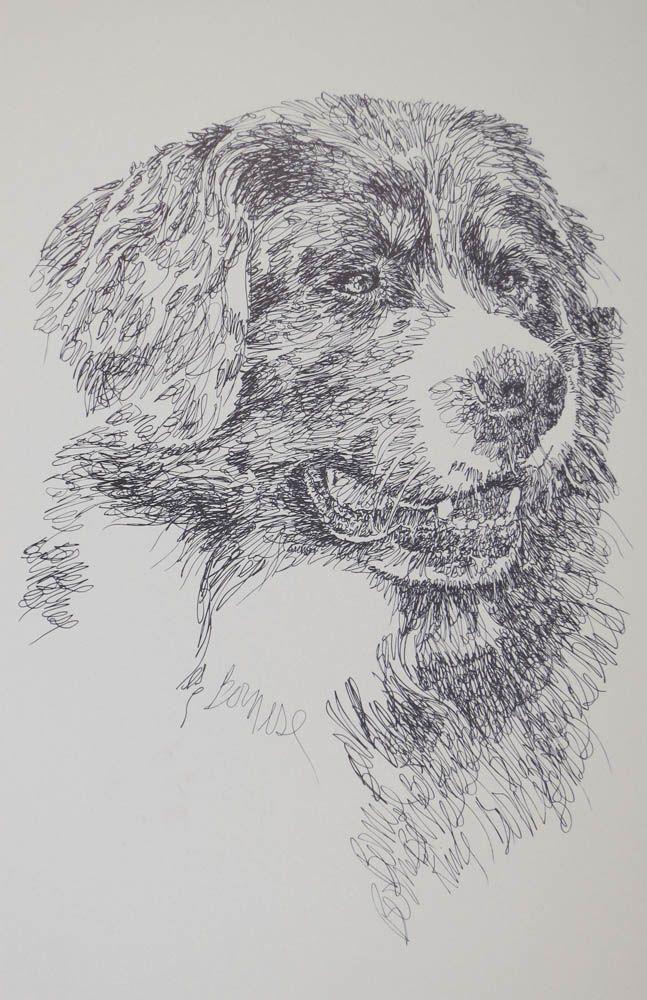 Drawn stare plain Dog drawn art from portraits
