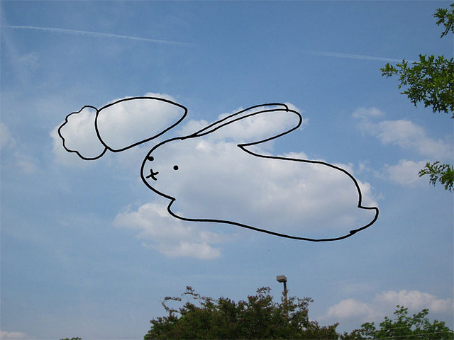 Drawn stare the sky drawing Bunny art ~ on cute