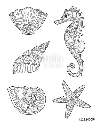 Drawn starfish doodle Coloring zentangle in Adult and
