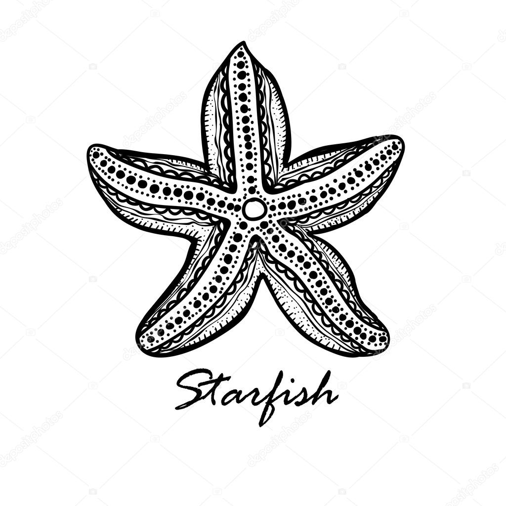 Drawn starfish doodle Textured #27498403 textured by Doodle