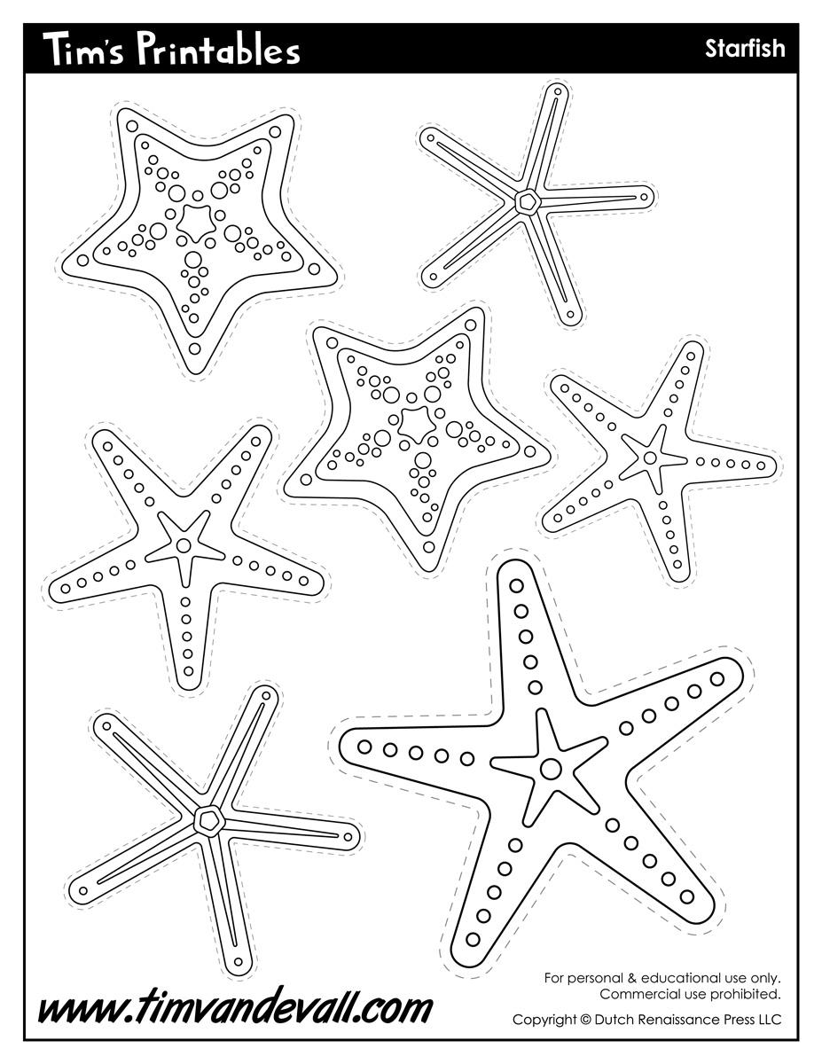 Drawn starfish printable Templates Template Starfish Shapes Preschool