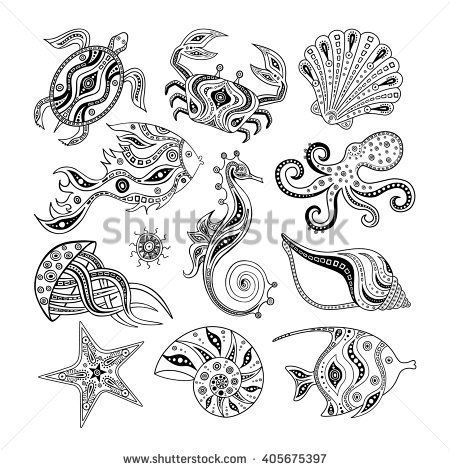 Drawn starfish sea creature 25+ of Pinterest white ideas