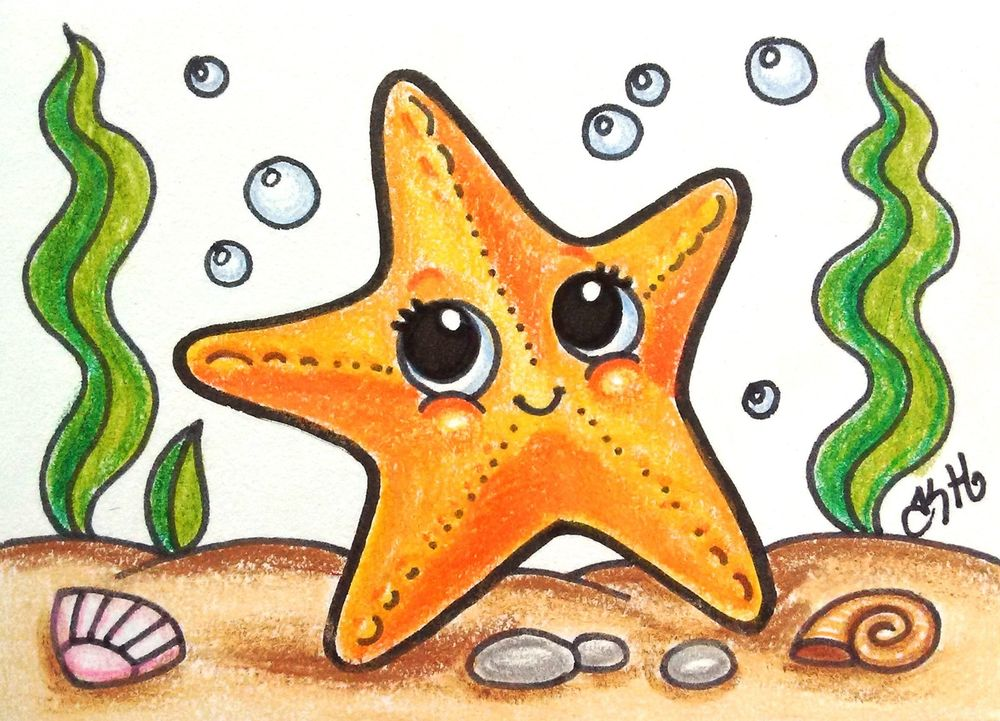 Drawn starfish sea creature Cartoon Fish  Drawing Sea