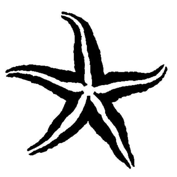 Drawn starfish vector Google Templates Pinterest on best