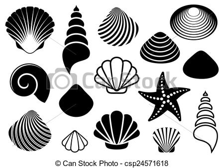 Drawn starfish vector And of Sea different starfish