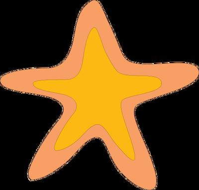 Drawn starfish vector Illustration Echinoderms vector Vector Seastar