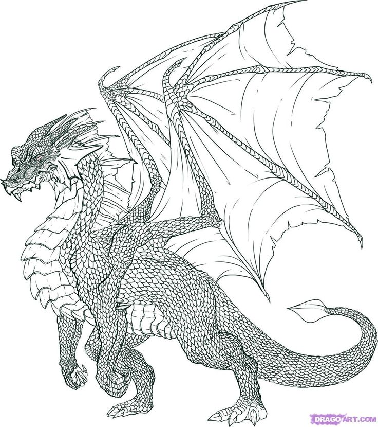 Drawn steampunk dragon Images drawing this DRAGON Pinterest