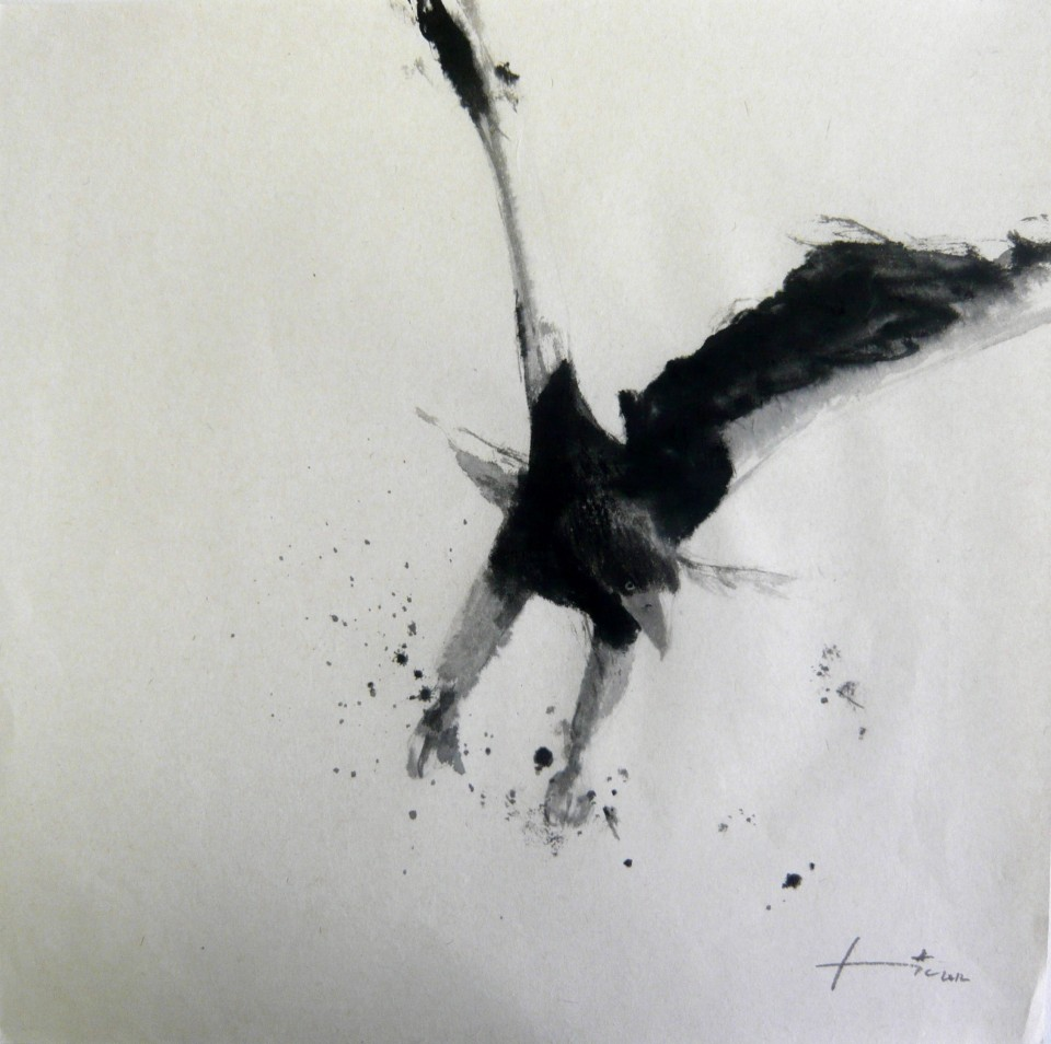 Drawn steller's sea eagle black and white Eagle (encre on Steller 2