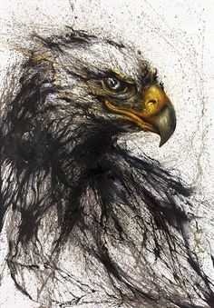 Drawn steller's sea eagle charcoal drawing Incredible eagle Arts With Splashing