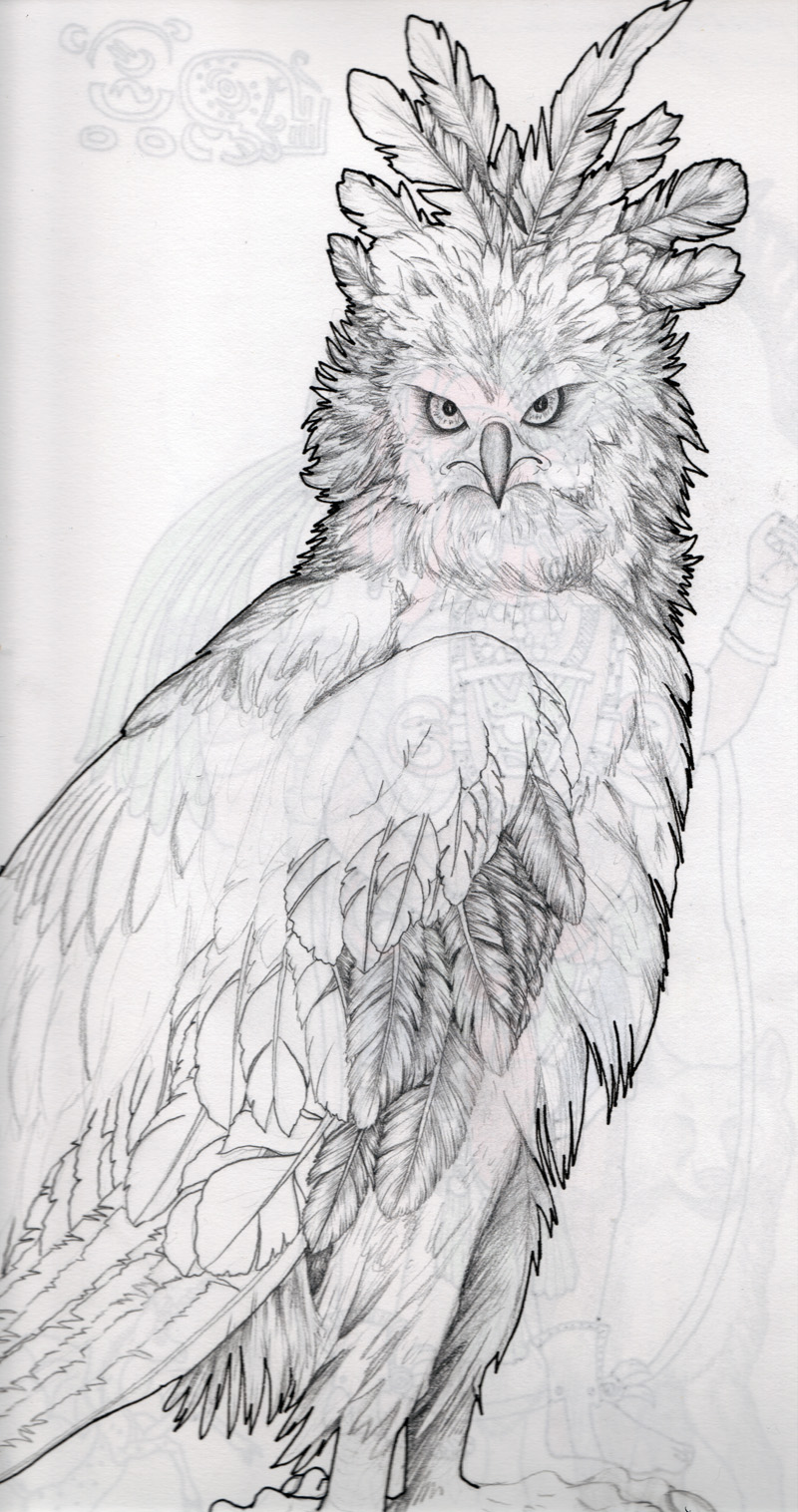 Drawn steller's sea eagle charcoal drawing Harpy Pinterest Eagle Pesquisa vector