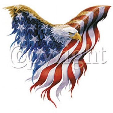 Drawn steller's sea eagle flag america On American Flag 95 American