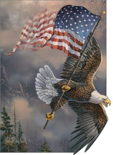 Drawn steller's sea eagle flag america Best  25+ on Pinterest
