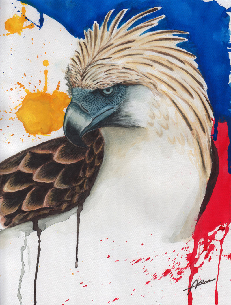 Drawn steller's sea eagle flag america Eagle Philippine drawing Philippine Eagle