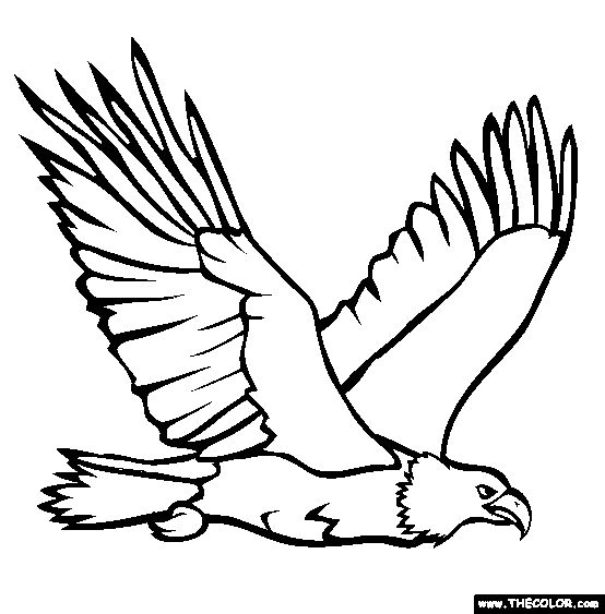 Bald Eagle clipart black and white Coloring tailed coloring Download Eagle