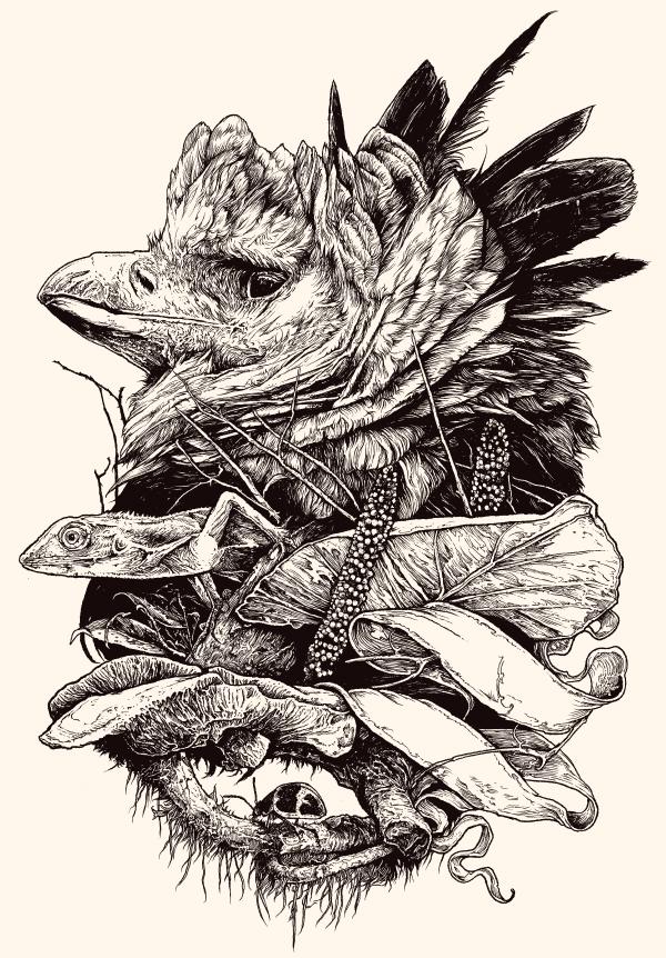 Drawn steller's sea eagle outline Tattoo eagle do tattoo Tatuagem