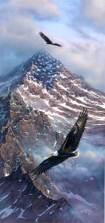 Drawn steller's sea eagle usa flag On Pin ideas Pinterest Flag
