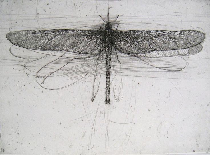 Drawn still life bad 25+ Dragonfly drawing via Dragonfly