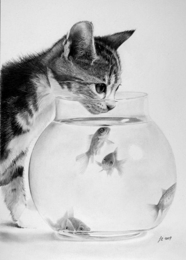Drawn still life cat Anime ideas on 25+ Simple