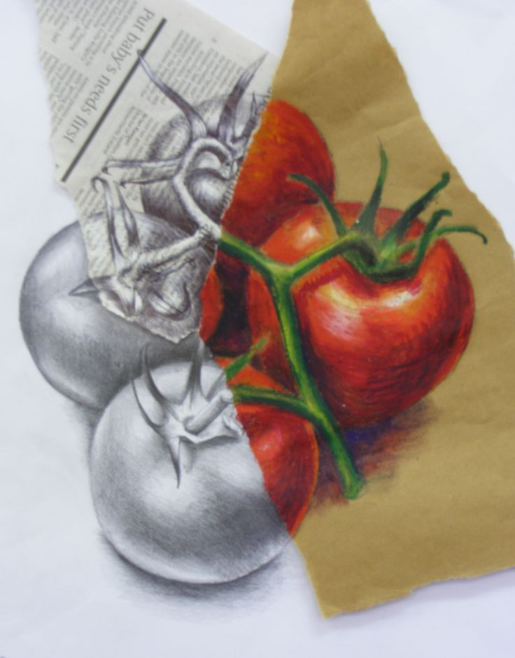 Drawn still life creative Different DrawingsStill images (9 paper